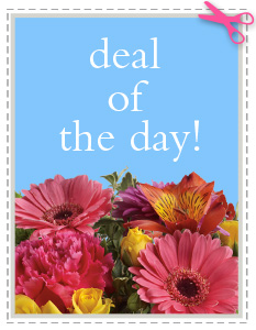 Deal of the Day in Simi Valley CA, Conroy's Flowers